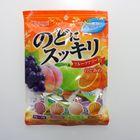 japan-store-bala-nodo-ni-sukkiri-fruit-assort-kasugai